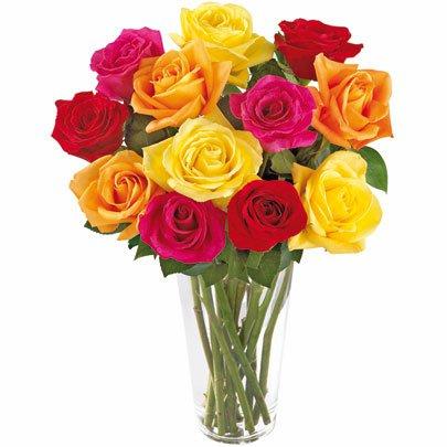 Brilhantes Rosas Coloridas no Vaso