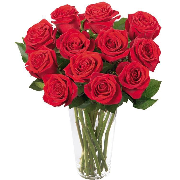 Brilhantes Rosas Vermelhas no Vaso