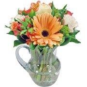 Frescor de Flores Laranjas