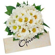 Flores e Ofner!