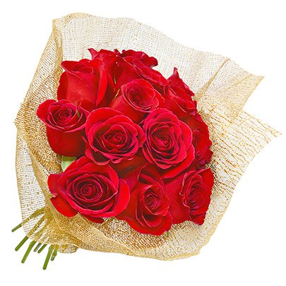 Fascínio de Rosas Vermelhas