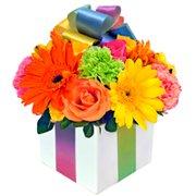Presente de Flores Coloridas