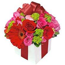 Presente de Flores Red