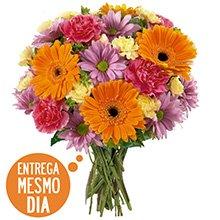 Buquê Flores do Campo (DF)