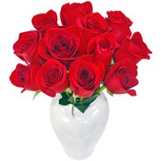 Serenata de Rosas Vermelhas