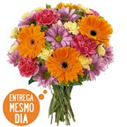 Buquê Flores do Campo (BA)