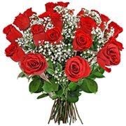 Buquê 24 Rosas Nacionais (DF)