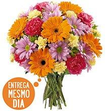 Grand Buquê Flores do Campo (DF)