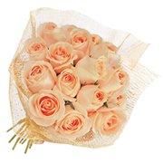Fascínio de Rosas Champanhe
