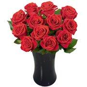 Luna de Rosas Vermelhas