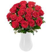 Magníficas Rosas Colombianas Vermelhas