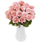 Magnífica Rosa Colombianas Cor de Rosa