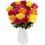 Magníficas Rosas Colombianas Coloridas