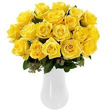 Magnífica Rosa Colombiana Amarela