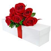 Preciosas Rosas Colombianas Vermelhas