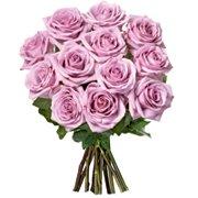 12 Lindas Rosas Lilás