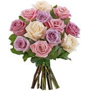 12 Rosas Importadas Mescladas