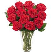Brilhantes Rosas Vermelhas (DF)