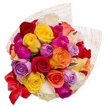 Esplêndido de Rosas Coloridas