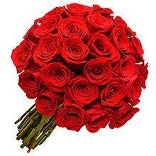 Espetáculo de Rosas Vermelhas