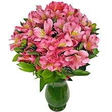 Alegrando o Dia Pink