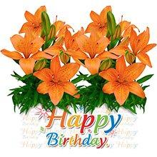 Happy Birthday com Lírios Laranja