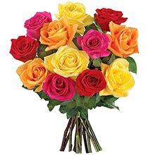 12 Rosas Coloridas Importadas