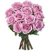 12 Rosas Lilás Importadas