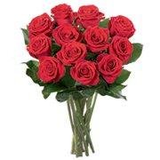 12 Rosas Vermelhas Importadas