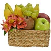 Frutas Tropicais & Astromélias Laranja