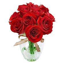 Surpresa de Rosas Vermelhas no Vaso