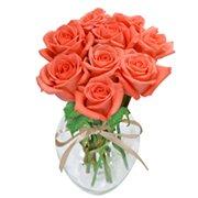 Surpresa de Rosas Rose