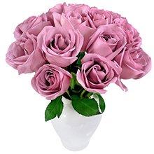 Serenata de Rosas Lilás