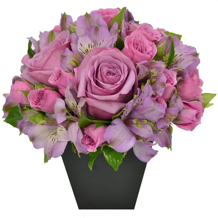 O Segredo da Flor Lilás