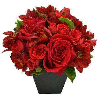 O Segredo da Flor Red