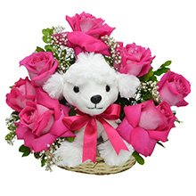 Rosas Pink & Poodle