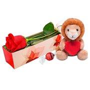Rosas + Leãozinho
