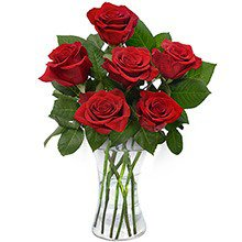 Luxuosas 6 Rosas Vermelhas no Vaso