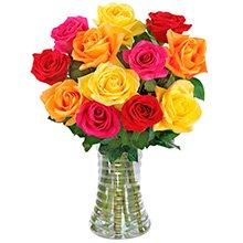 Inspiração 12 Rosas Coloridas no Vaso
