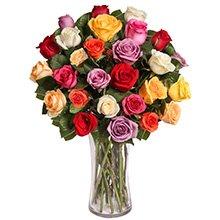 Exuberantes Rosas Coloridas