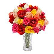 Opção do Amor Colorido no Vaso