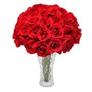 Opção do Amor Vermelho no Vaso