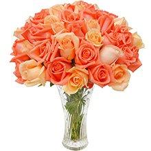 Opção do Amor Laranja 40 Rosas