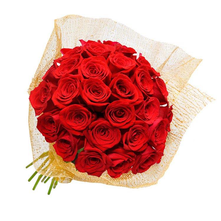 Fascinação de Rosas Vermelhas
