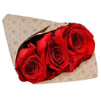 Para Dizer Que Te Adoro Três Rosas Vermelhas