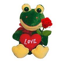 Sapinho Love & Rosa Vermelha