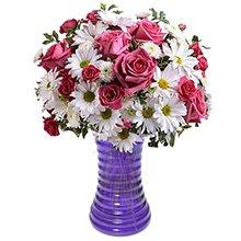 Jardim Encantado Rosa no Vaso Lilás