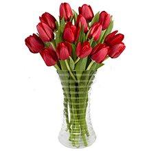 Tulipas Vermelhas no Vaso