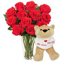 Brilhantes Rosas Vermelhas com Pelúcia