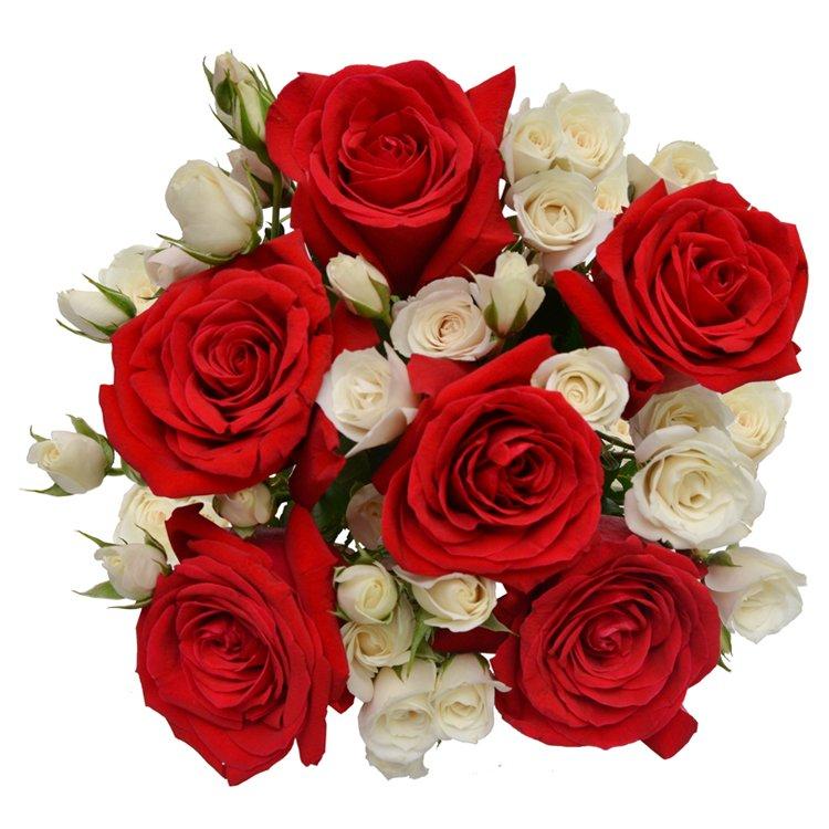 Buquê Luxuosas Vermelhas e Branca